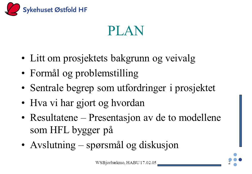 PLAN Litt om prosjektets bakgrunn og veivalg Formål og problemstilling