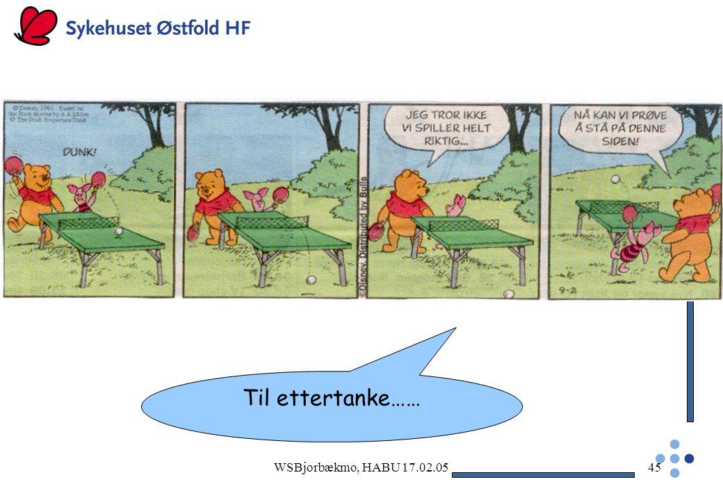 Til ettertanke…… WSBjorbækmo, HABU 17.02.05