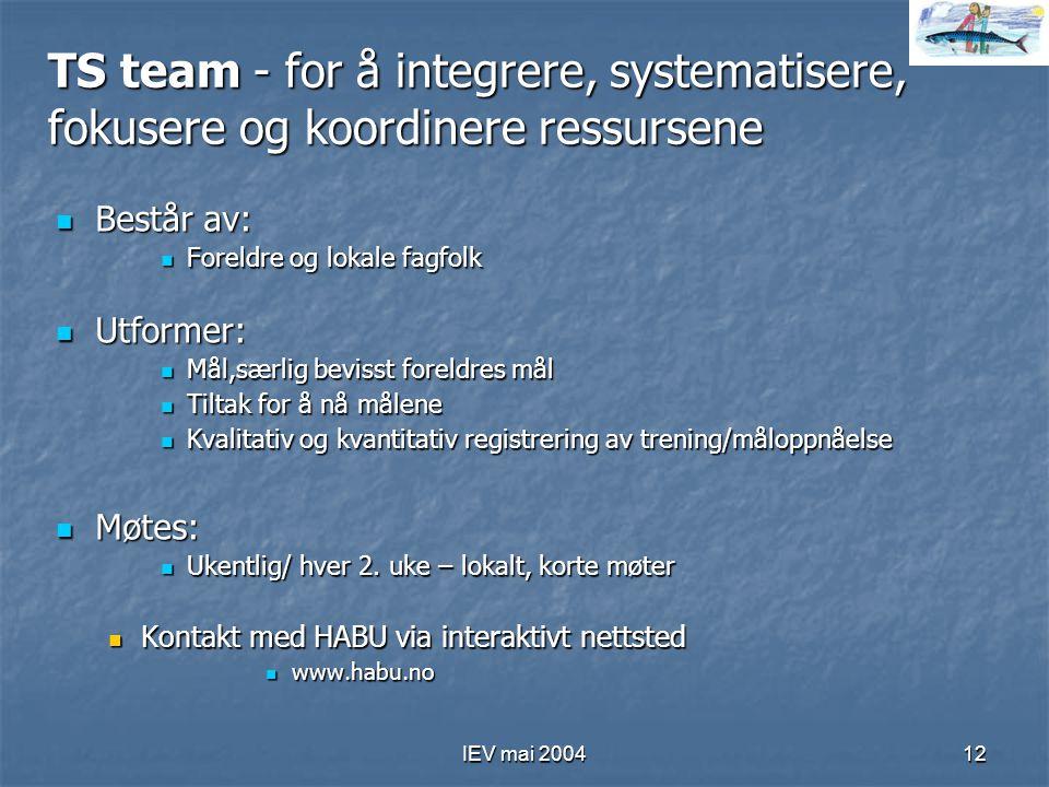 TS team - for å integrere, systematisere, fokusere og koordinere ressursene