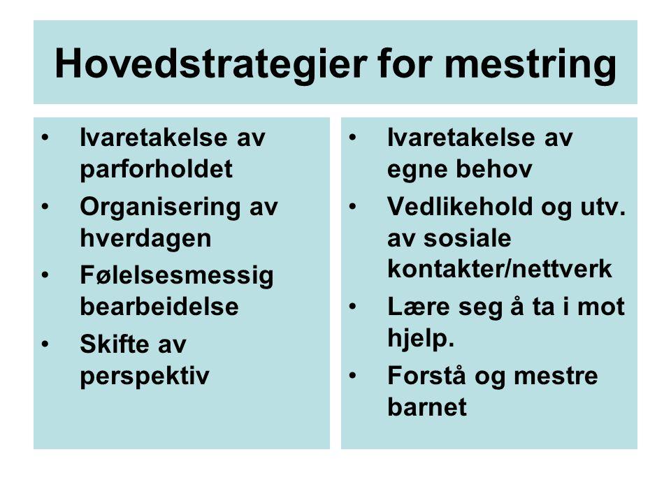 Hovedstrategier for mestring