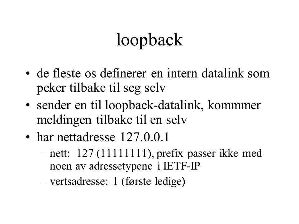 loopback de fleste os definerer en intern datalink som peker tilbake til seg selv.