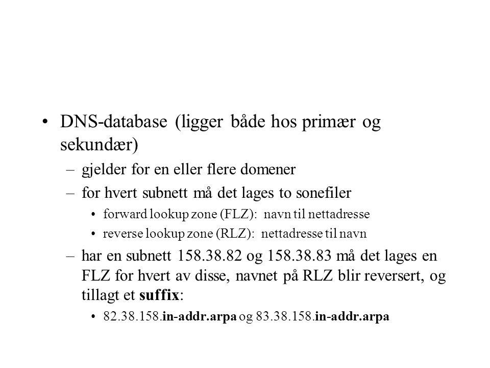 DNS-database (ligger både hos primær og sekundær)