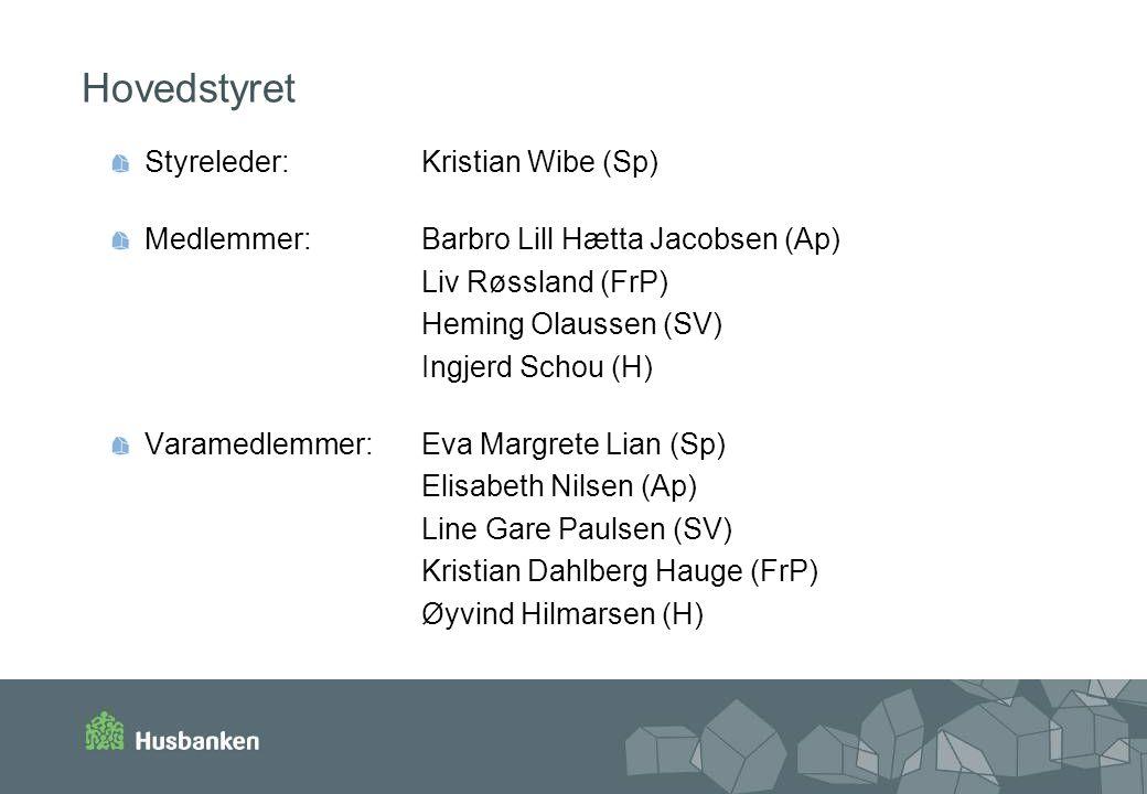 Hovedstyret Styreleder: Kristian Wibe (Sp)