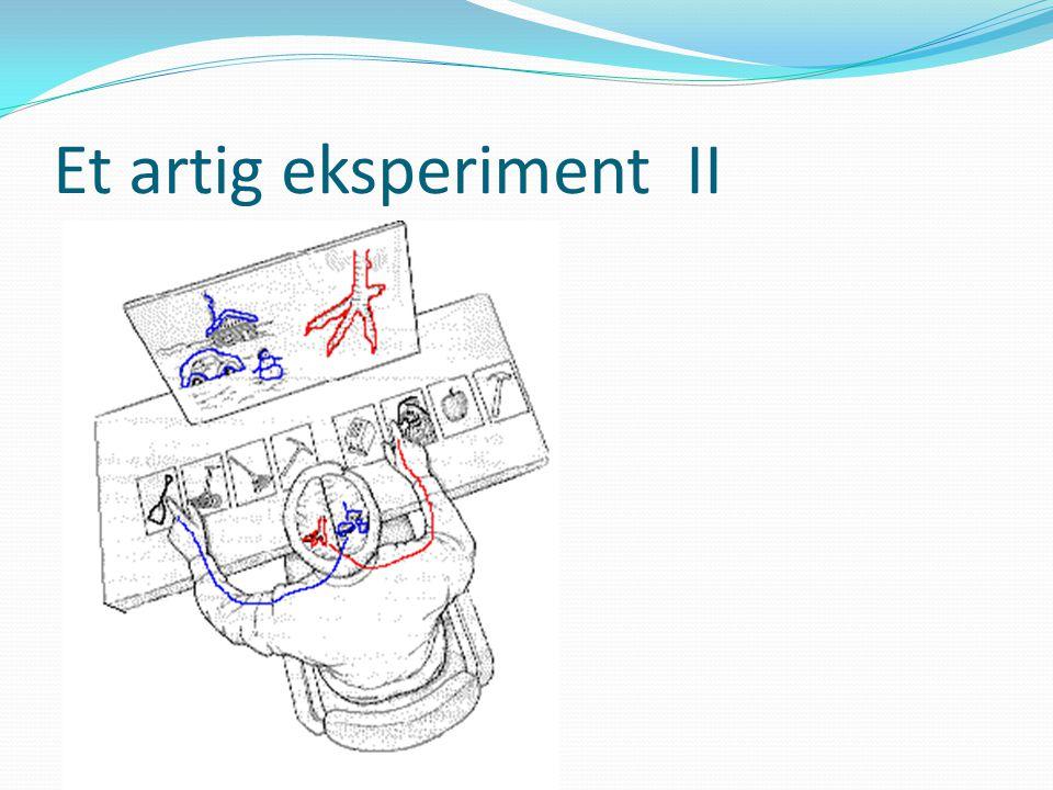 Et artig eksperiment II