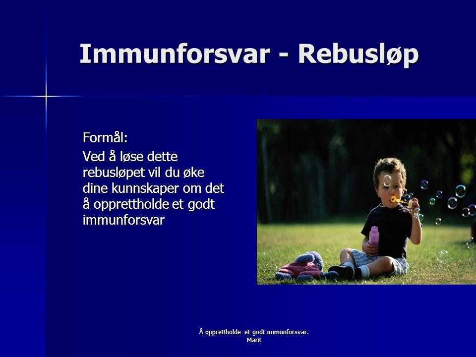 Immunforsvar - Rebusløp