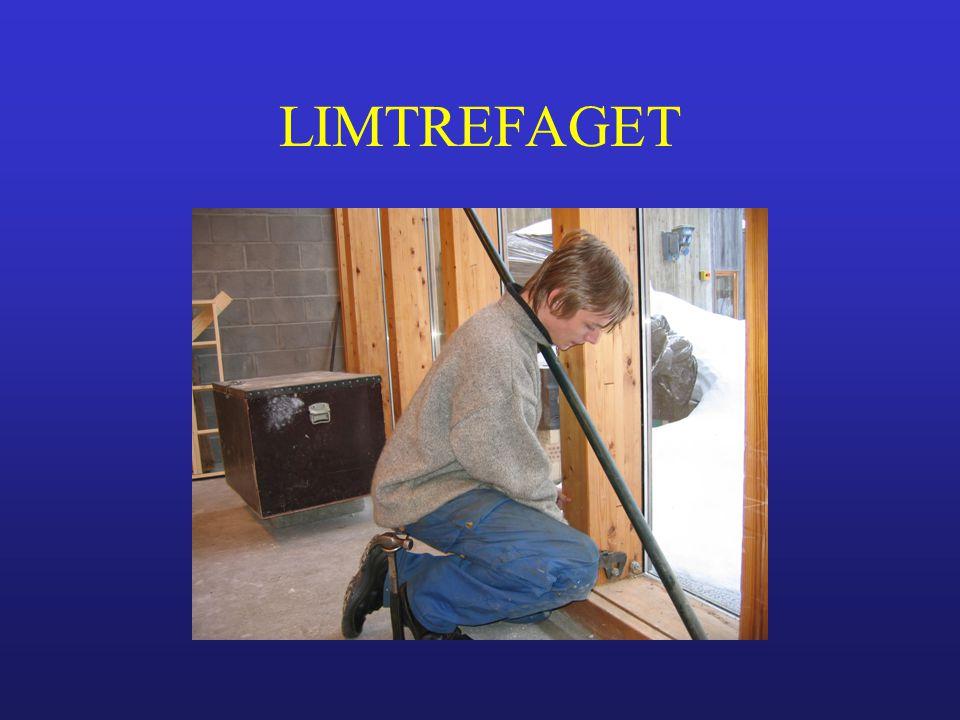 LIMTREFAGET