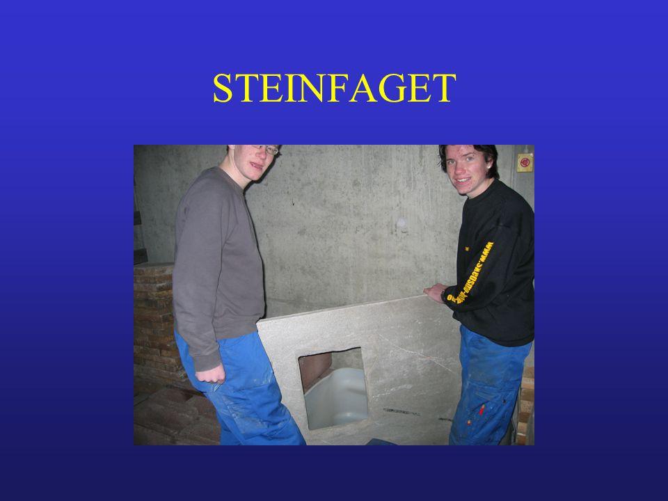 STEINFAGET
