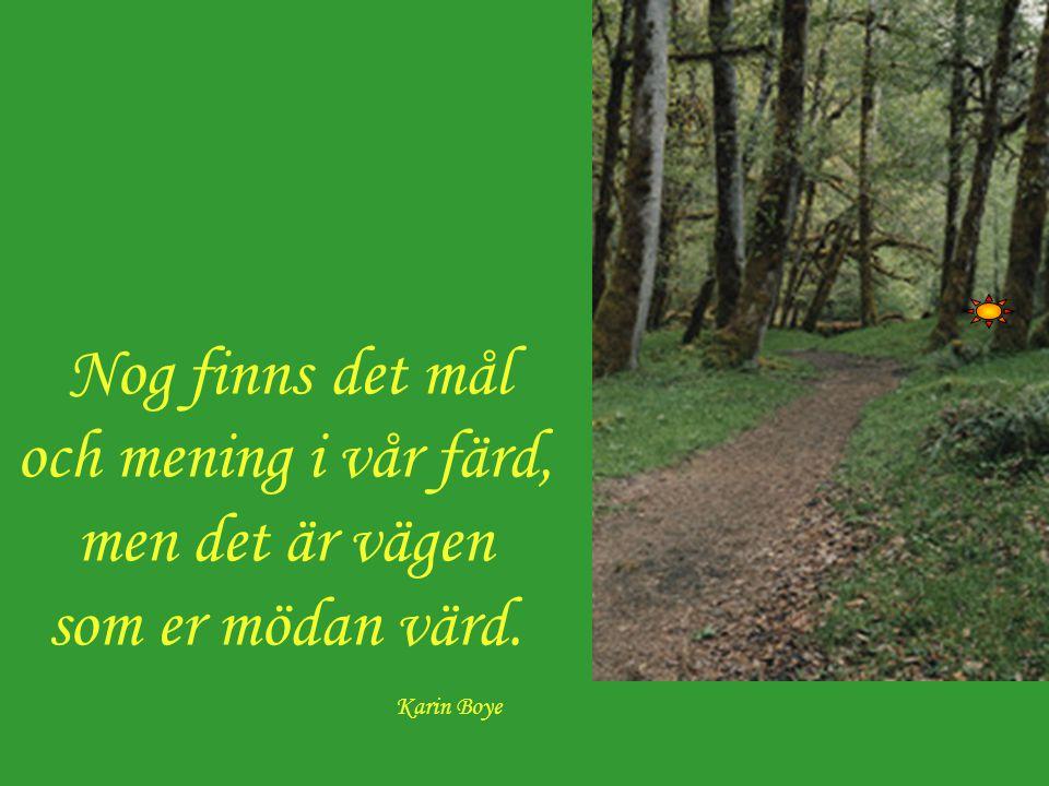 Nog finns det mål och mening i vår färd, men det är vägen som er mödan värd. Karin Boye
