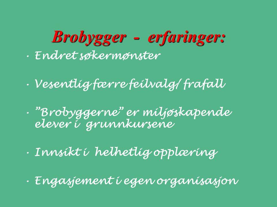Brobygger - erfaringer: