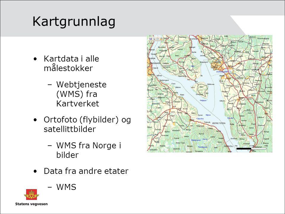 Kartgrunnlag Kartdata i alle målestokker
