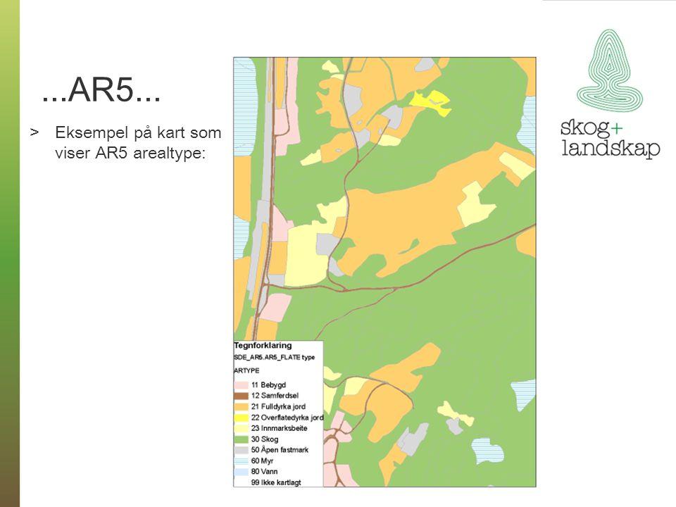 ...AR5... Eksempel på kart som viser AR5 arealtype: