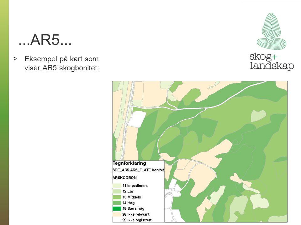 ...AR5... Eksempel på kart som viser AR5 skogbonitet: