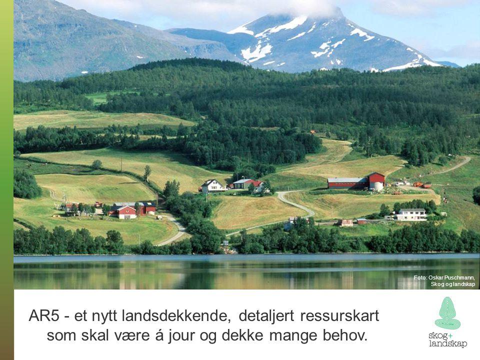 Foto: Oskar Puschmann, Skog og landskap