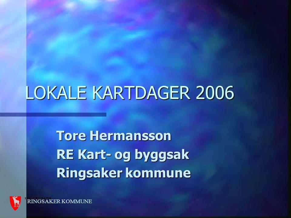Tore Hermansson RE Kart- og byggsak Ringsaker kommune