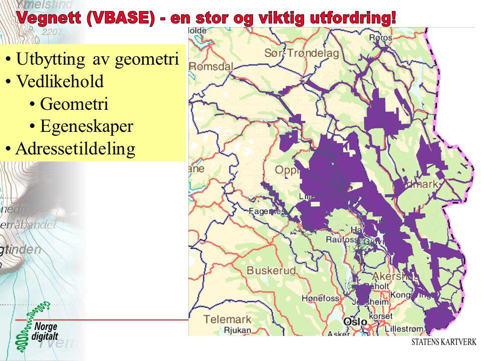 Vegnett (VBASE) - en stor og viktig utfordring!
