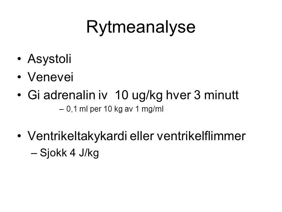 Rytmeanalyse Asystoli Venevei Gi adrenalin iv 10 ug/kg hver 3 minutt