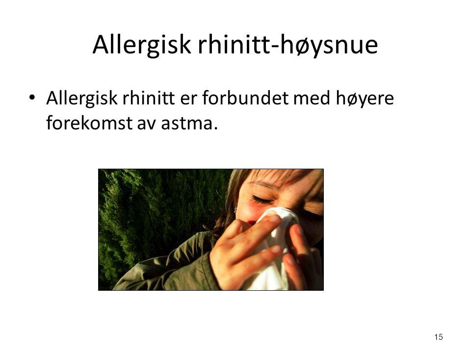 Allergisk rhinitt-høysnue