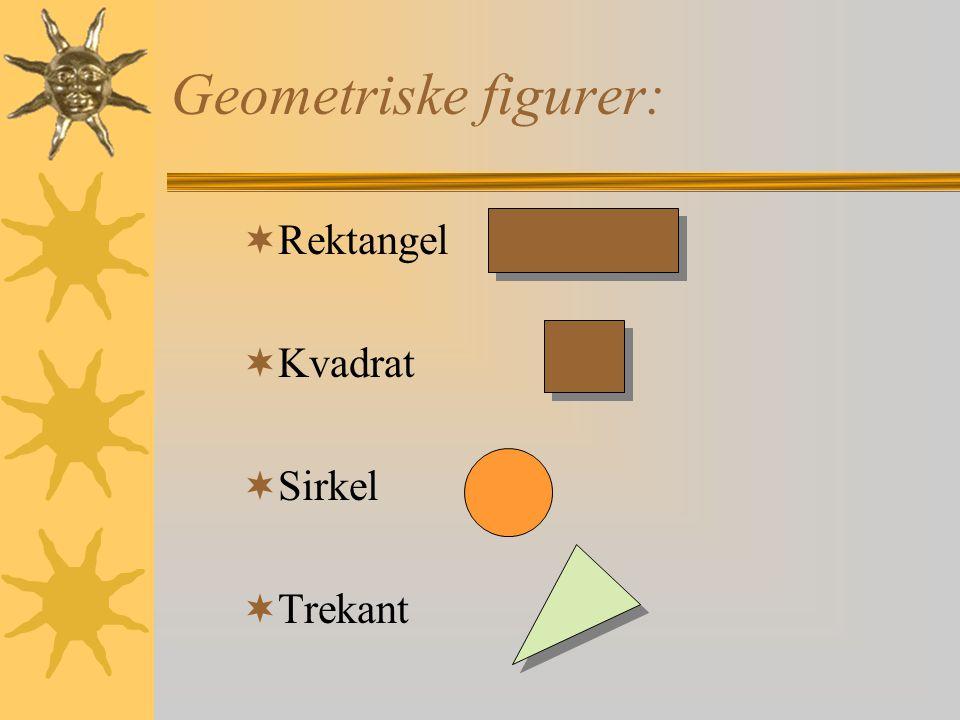Geometriske figurer: Rektangel Kvadrat Sirkel Trekant
