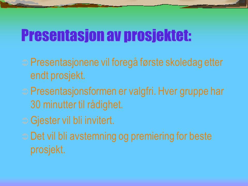 Presentasjon av prosjektet:
