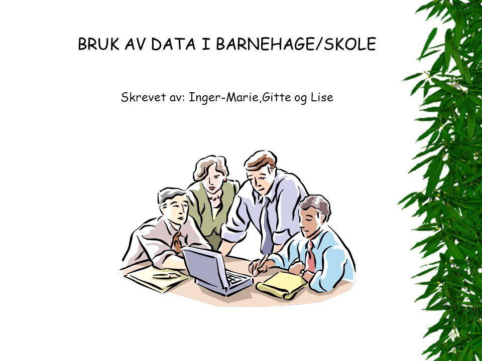 BRUK AV DATA I BARNEHAGE/SKOLE