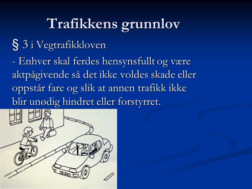 Trafikkens grunnlov § 3 i Vegtrafikkloven