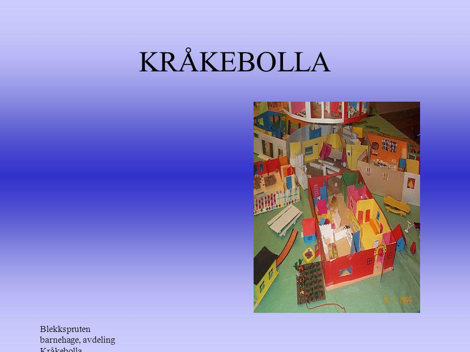 KRÅKEBOLLA Blekkspruten barnehage, avdeling Kråkebolla
