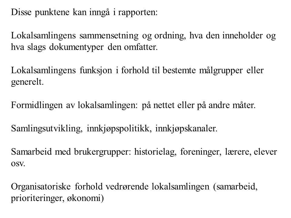Disse punktene kan inngå i rapporten:
