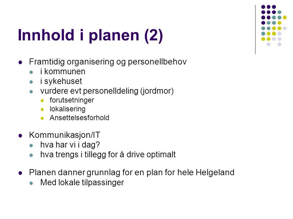 Innhold i planen (2) Framtidig organisering og personellbehov