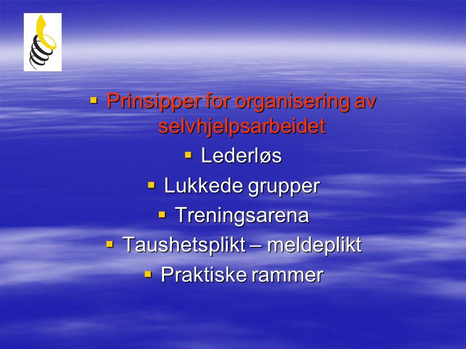 Prinsipper for organisering av selvhjelpsarbeidet Lederløs