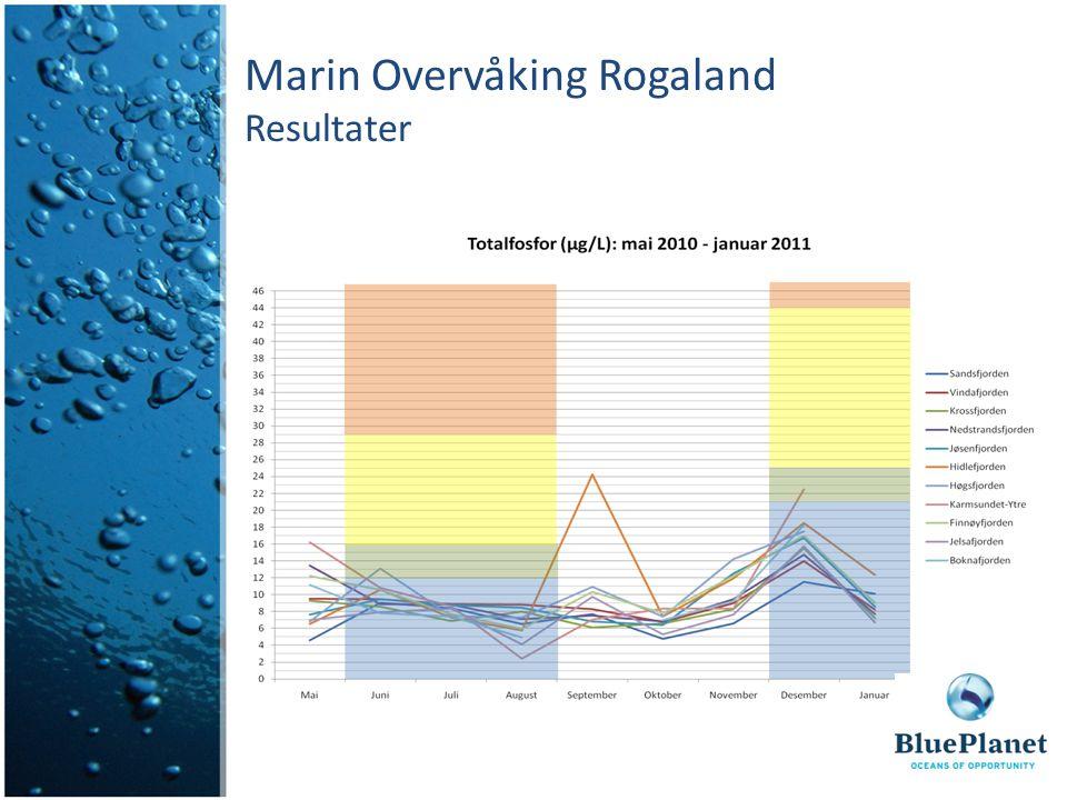 Marin Overvåking Rogaland Resultater