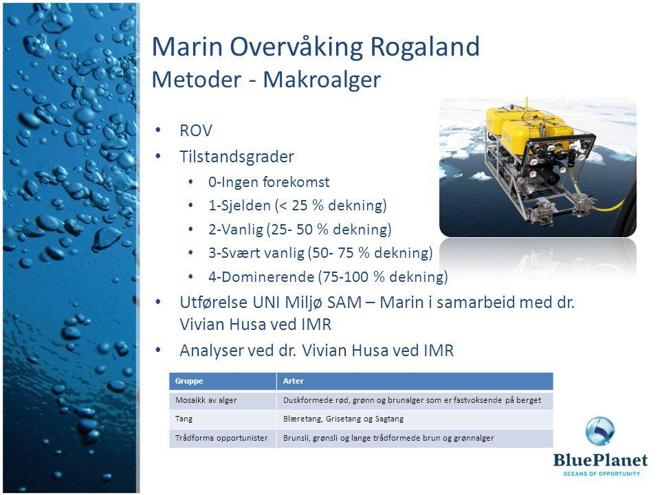 Marin Overvåking Rogaland Metoder - Makroalger