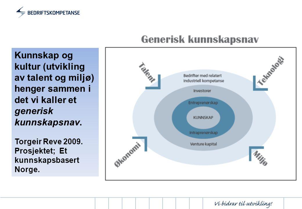Kunnskap og kultur (utvikling av talent og miljø) henger sammen i det vi kaller et generisk kunnskapsnav.