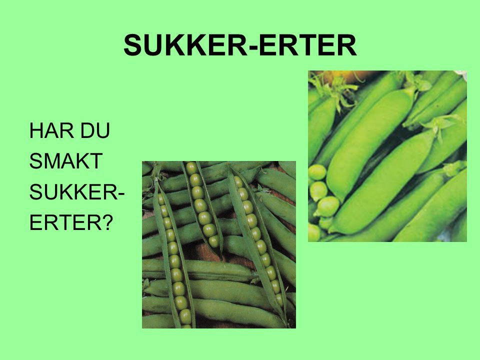 SUKKER-ERTER HAR DU SMAKT SUKKER- ERTER
