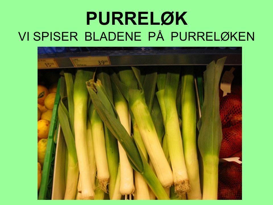 PURRELØK VI SPISER BLADENE PÅ PURRELØKEN