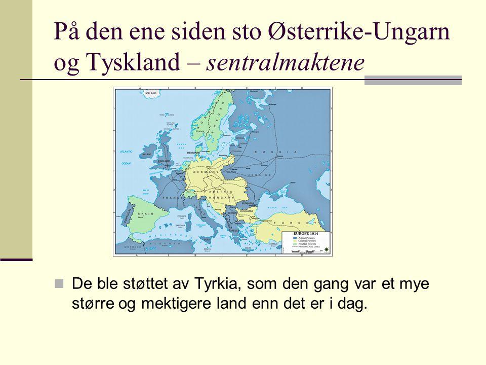 På den ene siden sto Østerrike-Ungarn og Tyskland – sentralmaktene