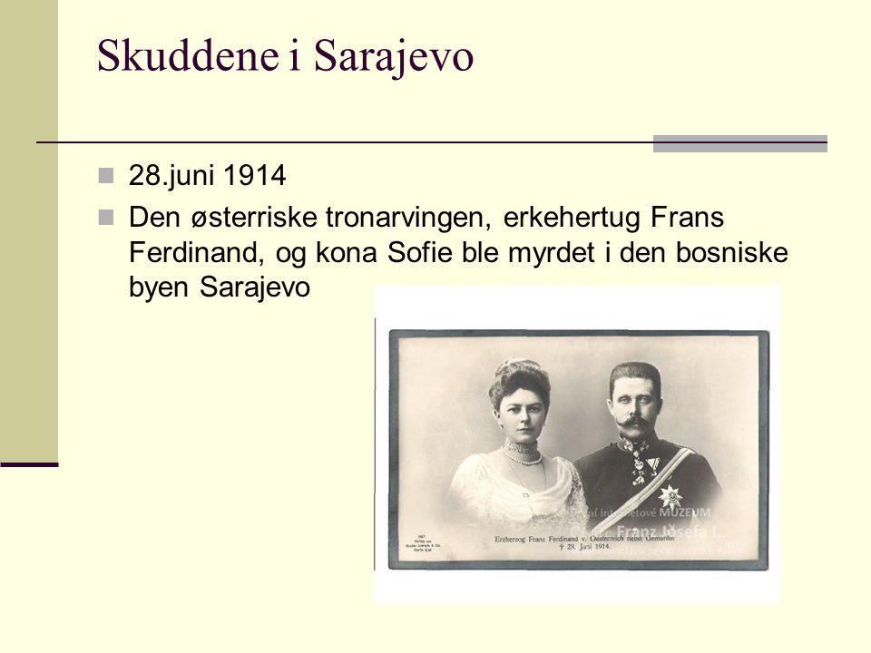 Skuddene i Sarajevo 28.juni 1914