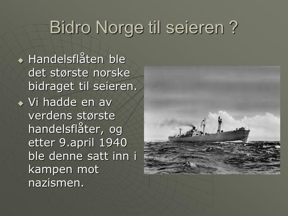 Bidro Norge til seieren