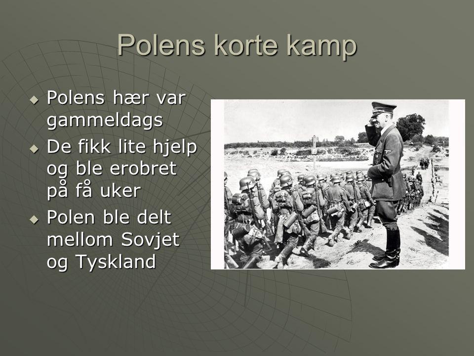 Polens korte kamp Polens hær var gammeldags