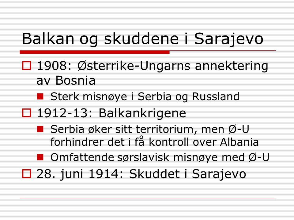 Balkan og skuddene i Sarajevo