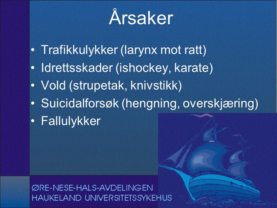 Årsaker Trafikkulykker (larynx mot ratt)