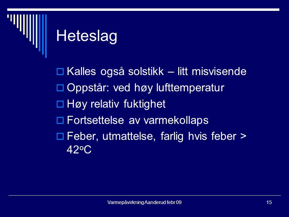Varmepåvirkning Aanderud febr 09