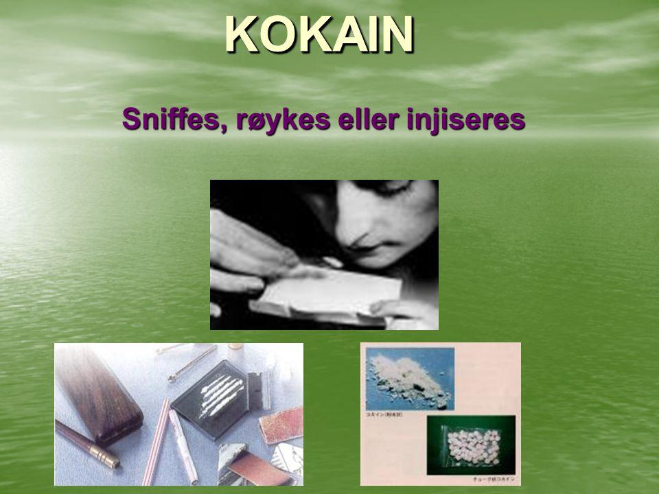 KOKAIN Sniffes, røykes eller injiseres