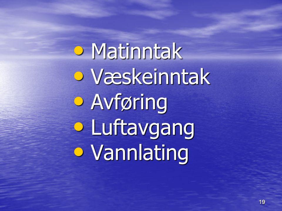 Matinntak Væskeinntak Avføring Luftavgang Vannlating