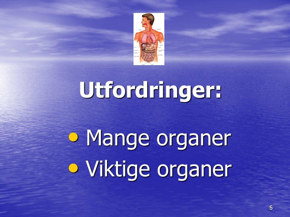 Utfordringer: Mange organer Viktige organer