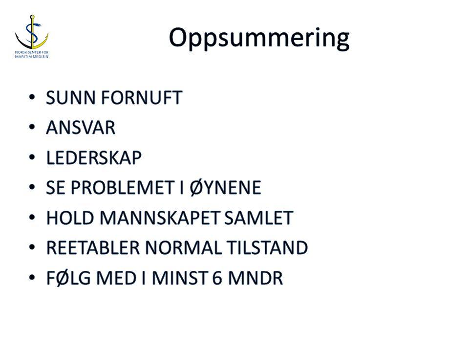 Oppsummering SUNN FORNUFT ANSVAR LEDERSKAP SE PROBLEMET I ØYNENE