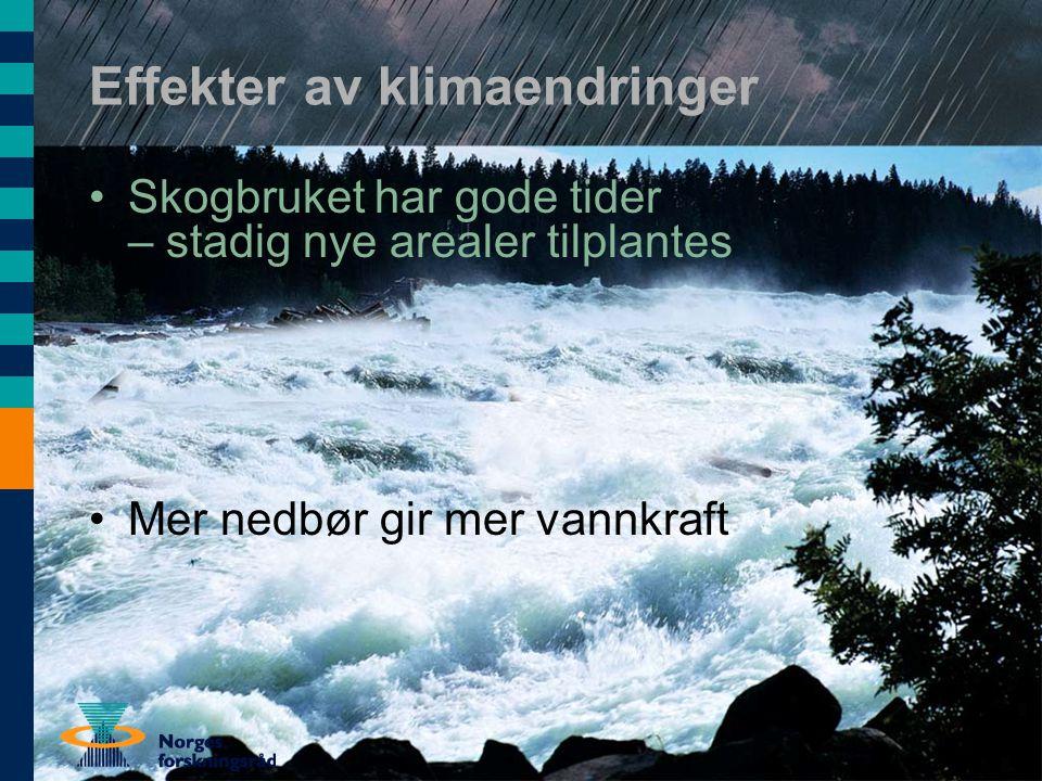 Effekter av klimaendringer