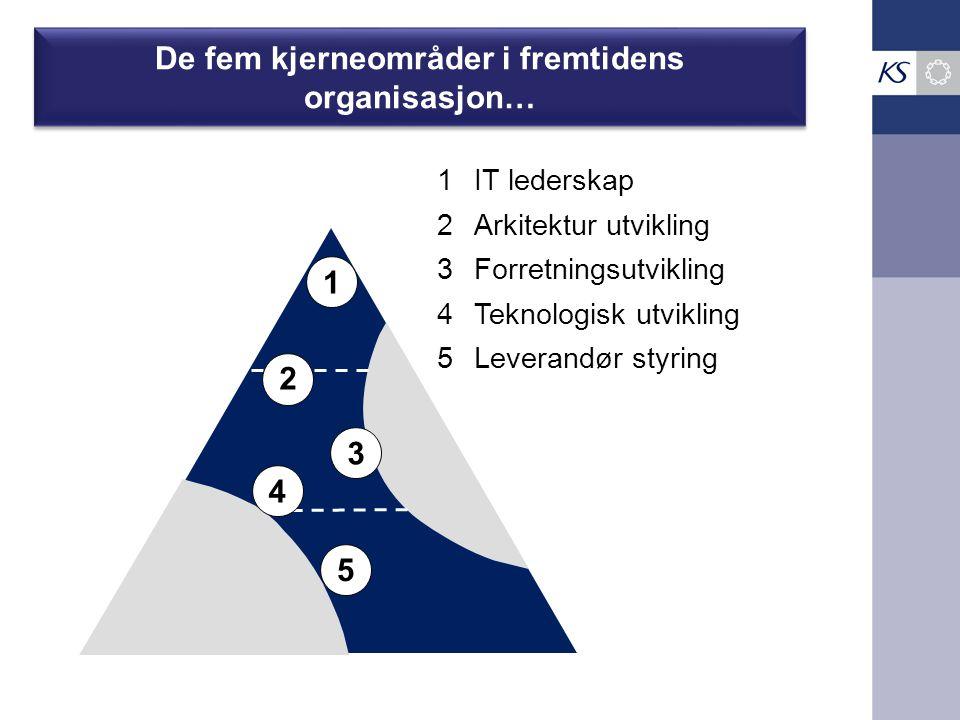 De fem kjerneområder i fremtidens organisasjon…