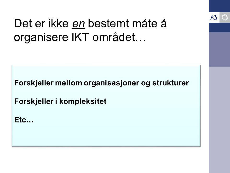 Det er ikke en bestemt måte å organisere IKT området…