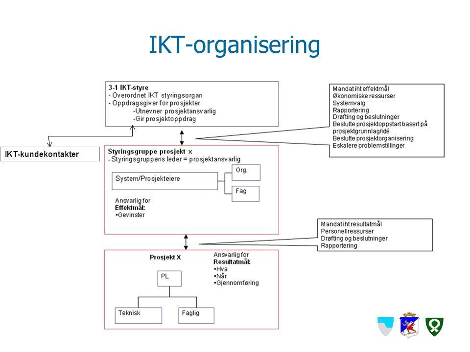 IKT-organisering IKT-kundekontakter