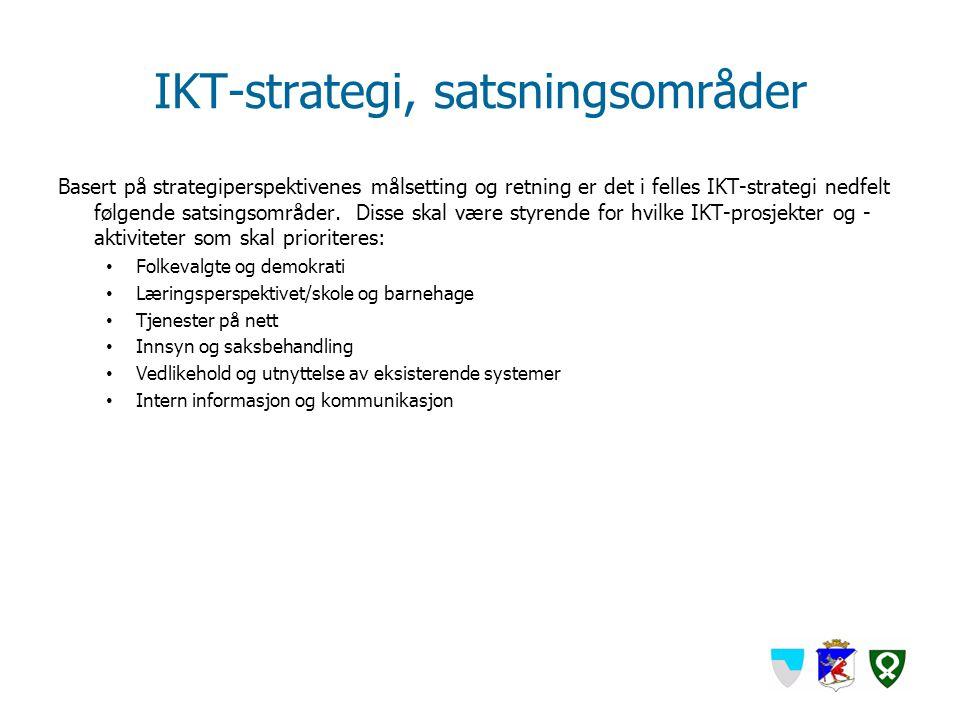 IKT-strategi, satsningsområder